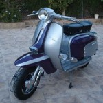 DEANS PURPLE RAIN LAMMY